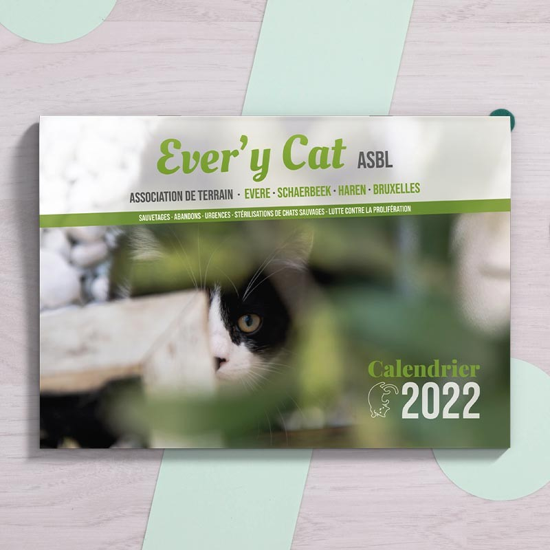 Calendrier 2022 Ever'y Cat