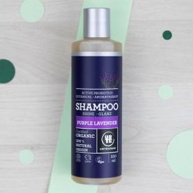 Shampoing cheveux normaux et secs à la Lavande